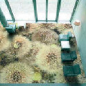 наливной пол - фото